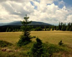 14_Umirjena in neokrnjena narava v LPN Pohorje