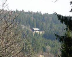 17_Stik s pristno naravo v LPN na Kočevskem