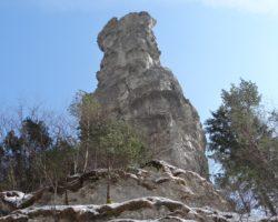alpskega