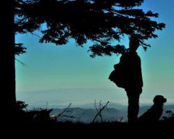 Pogled z lovišča v dolino in pred začetkom dneva pregled naravnega okolja divjadi